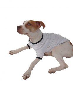 TooLoud Lucky Shamrock Design Distressed Stylish Cotton Dog Shirt 2