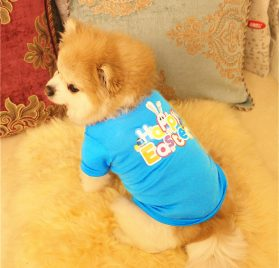 Axchongery Dog Shirt, Puppy Bunny Apparel Happy Easter Pet Clothing for Small Dog (Sky Blue, XXS) 2