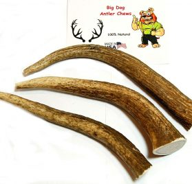 Big Dog Antler Chews 3-Pack Elk Antler Dog Chews, Medium Tines, 6 inches to 10 inches Long, for Small to Medium Sized Dogs and Puppies Brand 2