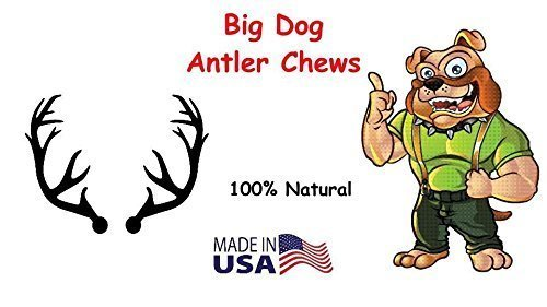 Big Dog Antler Chews 3-Pack Elk Antler Dog Chews, Medium Tines, 6 inches to 10 inches Long, for Small to Medium Sized Dogs and Puppies Brand 7