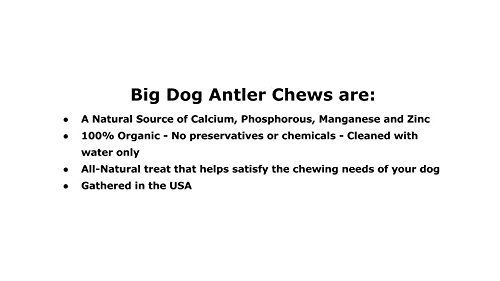 Big Dog Antler Chews 3-Pack Elk Antler Dog Chews, Medium Tines, 6 inches to 10 inches Long, for Small to Medium Sized Dogs and Puppies Brand 8