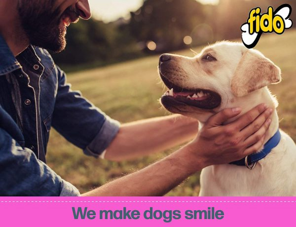 Fido Dental Care Belly Bones for Dogs, Yogurt Flavor - Safely Digestible Chew That Promotes Plaque and Tartar Control 5