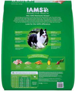 Iams Proactive Health Adult Minichunks Dry Dog Food Chicken, 30 Lb. Bag 2