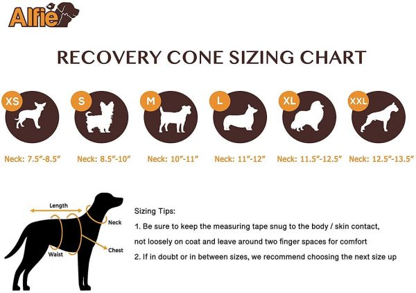 Alfie Pet - Candace Soft Recovery Collar (for Dogs and Cats) 6