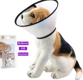 Bolbove Pet Plastic Clear Cone Recovery E-Collar for Mini Dogs & Small Cats 2