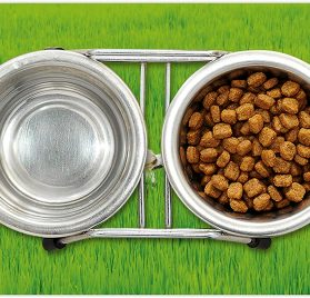 Lunarable Nature Pet Mat for Food and Water 2