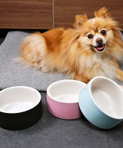 Magisso Happy Pet Project Naturally Cooling Ceramics Water Bowl (Blue, 6 Inch) 5