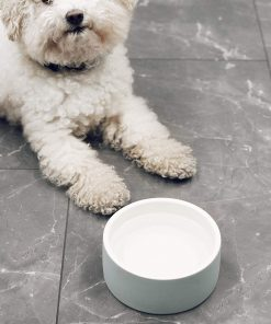 Magisso Happy Pet Project Naturally Cooling Ceramics Water Bowl (Blue, 6 Inch) 6