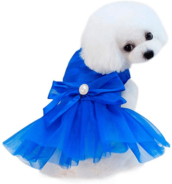 Wakeu Small Dog Girl Dress Pet Puppy Lace Tutu Stripe Vest Shirt Clothes (XS, Blue)