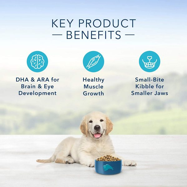 Blue Buffalo Life Protection Formula Puppy Dog Food – Natural Dry Dog Food for Puppies – Chicken and Brown Rice – 6 lb. Bag 5