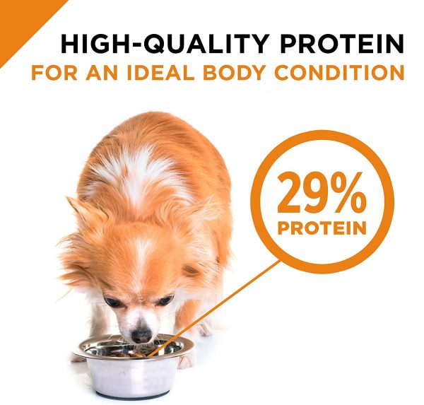 Purina Pro Plan Small & Toy Breed Formula Adult Dry Dog Food 9