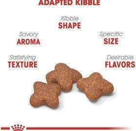 Royal Canin Size Health Nutrition Mini Mature 8+ Dry Dog Food 2