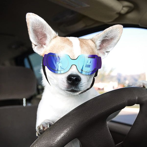 Namsan Stylish and Fun Pet Dog Puppy UV Goggles Sunglasses Waterproof Protection Sun Glasses for Dog