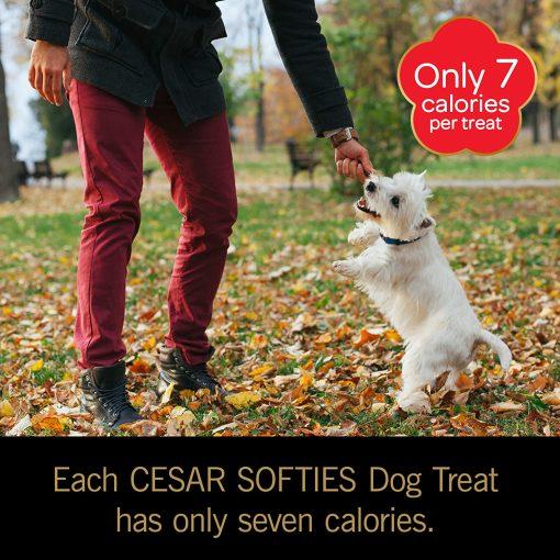 Cesar Softies Dog Treats 7