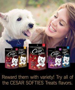 Cesar Softies Dog Treats 8