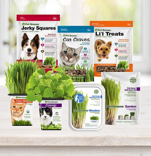 Pet Greens Soft-Chew Dog Li'l Treats 4