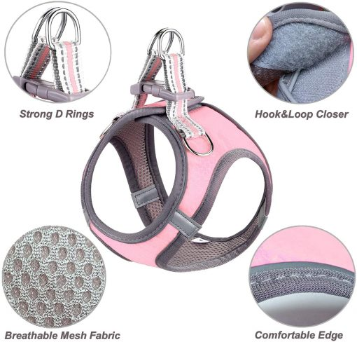 JSXD Small Dog Harness,Puppy Harness,Adjustable Leash and Collar Set for Small Dogs,Step-in Dog Harness 2