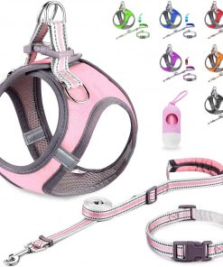 JSXD Small Dog Harness,Puppy Harness,Adjustable Leash and Collar Set for Small Dogs,Step-in Dog Harness