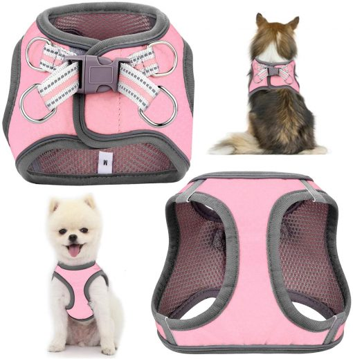 JSXD Small Dog Harness,Puppy Harness,Adjustable Leash and Collar Set for Small Dogs,Step-in Dog Harness 3