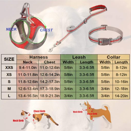 JSXD Small Dog Harness,Puppy Harness,Adjustable Leash and Collar Set for Small Dogs,Step-in Dog Harness 5