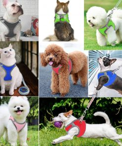 JSXD Small Dog Harness,Puppy Harness,Adjustable Leash and Collar Set for Small Dogs,Step-in Dog Harness 7