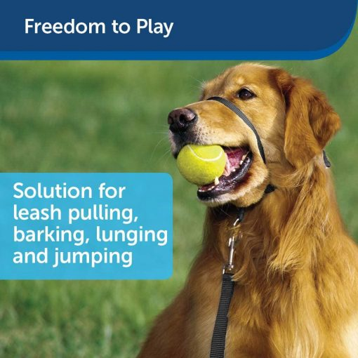 PetSafe Gentle Leader Headcollar, No-Pull Dog Collar – Perfect for Leash & Harness Training 2