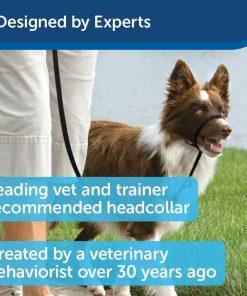 PetSafe Gentle Leader Headcollar, No-Pull Dog Collar – Perfect for Leash & Harness Training 3