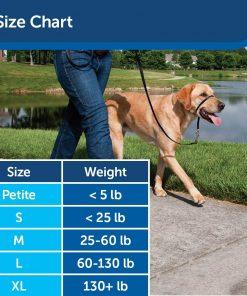 PetSafe Gentle Leader Headcollar, No-Pull Dog Collar – Perfect for Leash & Harness Training 6
