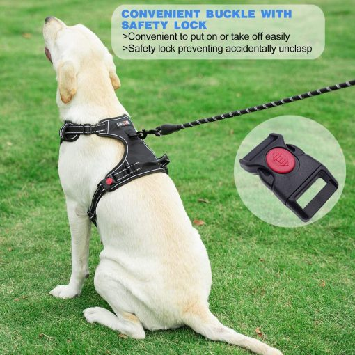 tobeDRI No Pull Dog Harness Adjustable Reflective Oxford Easy Control Medium Large Dog Harness with A Free Heavy Duty 5ft Dog Leash 4