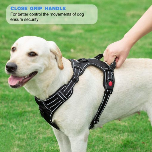 tobeDRI No Pull Dog Harness Adjustable Reflective Oxford Easy Control Medium Large Dog Harness with A Free Heavy Duty 5ft Dog Leash 5