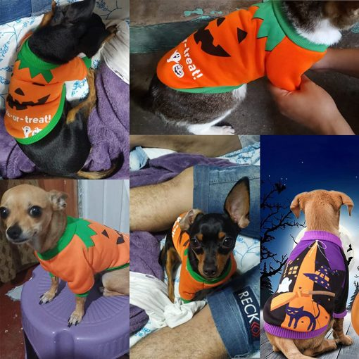 2 Pack Halloween Dog Shirts Clothes for Small Dogs, Puppy Knitwear Dog Sweater Soft Warm Pet Clothes Apparel Costumes for Chihuahua 6