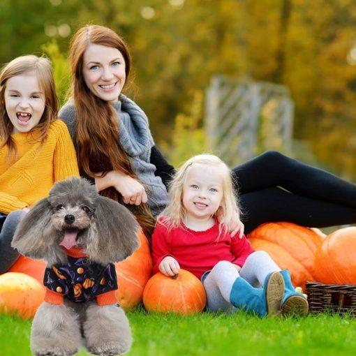 Dog Pajamas Medium Sized Dog Halloween Clothes 4 Legged Puppy Dog Onesie Pet Halloween Costumes Rompers Bodysuit Pumpkin Cat Outfit Apparel 2