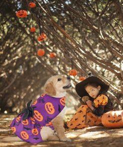 Ruizik 3 Pack Halloween Dog Dress,Halloween Costume for Dogs Female Male,Dog Halloween Costume xs,Halloween Christmas Cosplay 5
