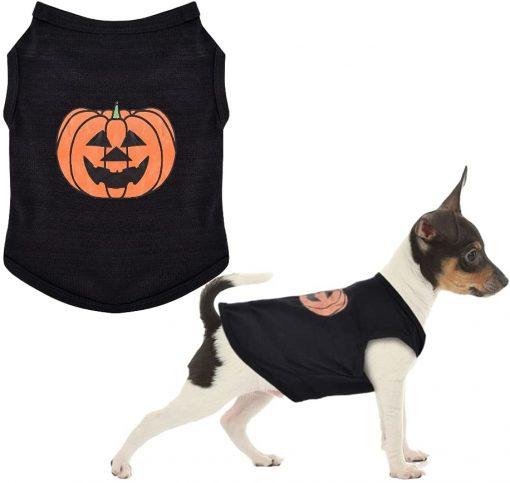 Ruizik Halloween Costumes for Small Dogs,Small Dog Tshirts Female Male,Halloween Pumpkin Dog Shirt,Halloween Costumes for xs Puppies,Small Dog Outfit